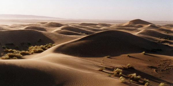 désert marocain - mhamid - les dunes au coucher du soleil