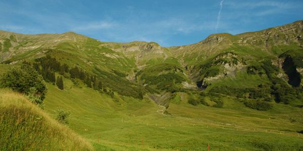 Domaine de la Sasse - l'alpage et la crête du Mont Joly