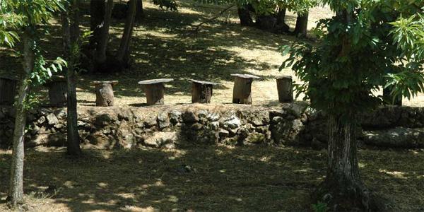 Les ruches troncs d'Arrigas dans les Cévennes