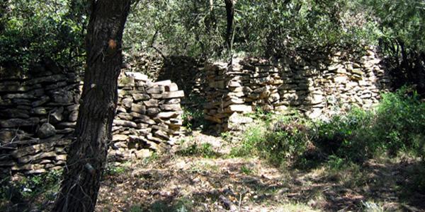l'enclos à abeilles de Tourouzelle Gléon dans l'Aude