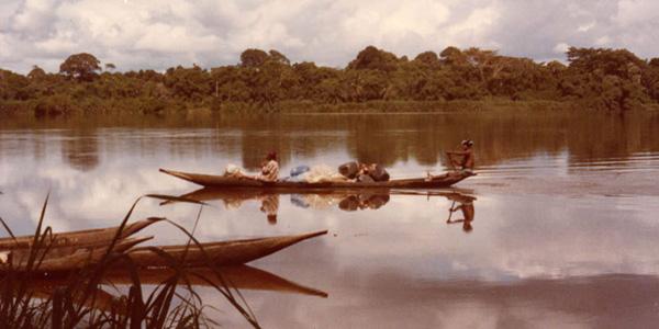 Cameroun - la remontée du Wouri