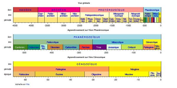 Nature - Echelle synoptique linéaire des temps géologiques