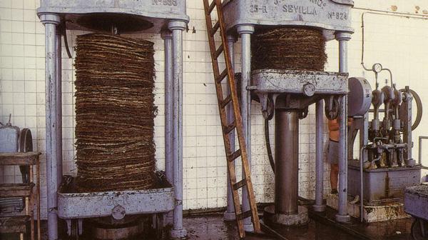 Opération de pressage des capachetas de raisins - torro albala