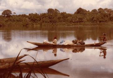 Le Cameroun – afrique en miniature