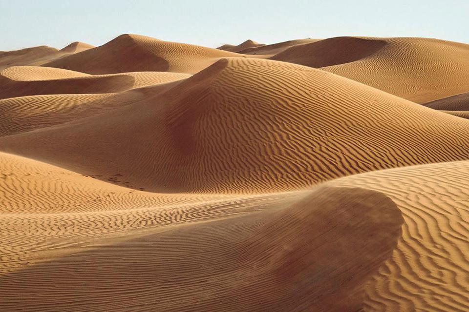 Désert du Wahiba, une sublime mer de dunes
