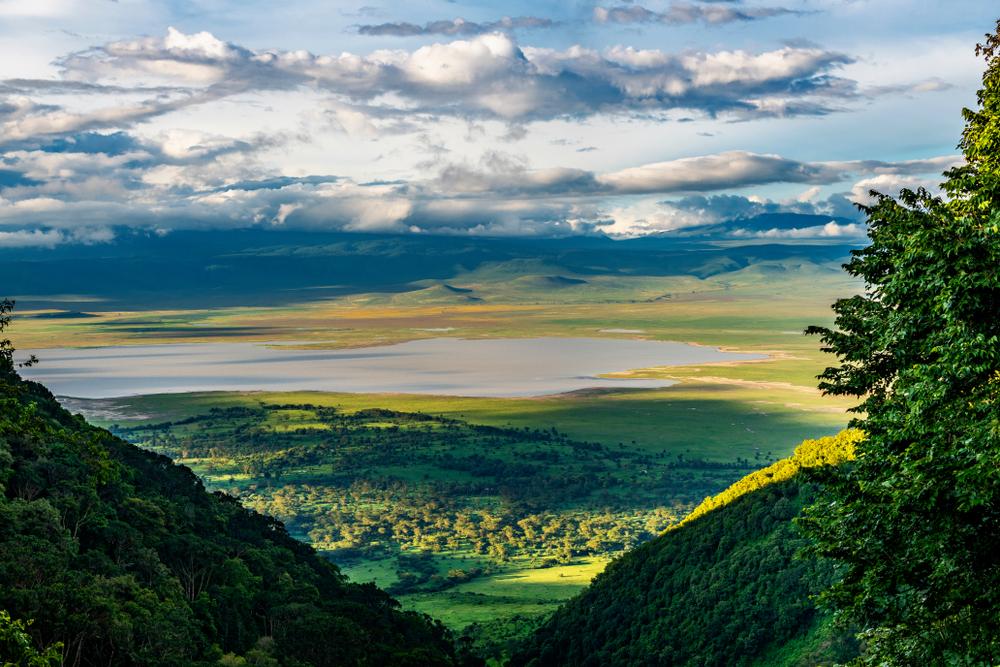 Tanzanie - parcs Nationaux : Ngorongoro