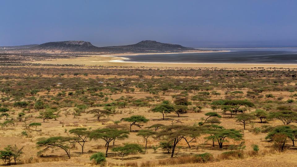 circuit ethiopie : trekking parc national abijatta-shalla