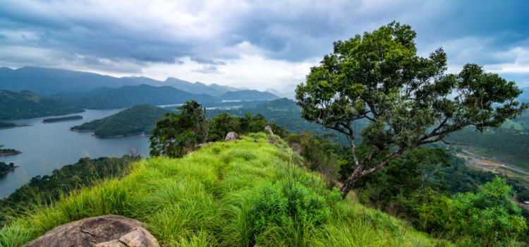 SRI LANKA : TREK ET NATURE