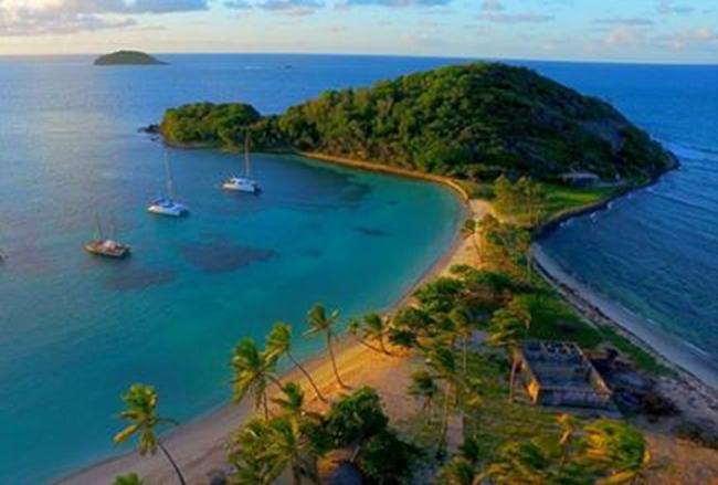 jean-gaches - Circuit aux Grenadines : mayereau
